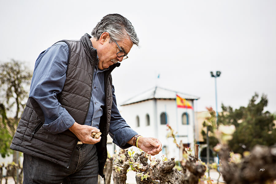 Vincente Garcia - the Godfather of Cava