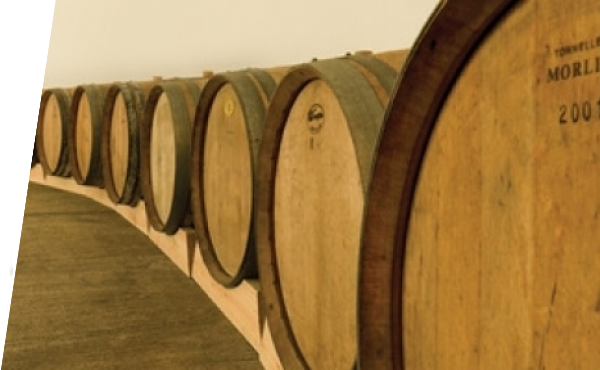 Barrels on the Wine Cellar Club Entrance